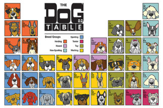 A296D - Angry Squirrel Studio - The Dog Table