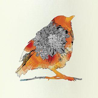 A303 - Abolina, Iveta - Orange Bird