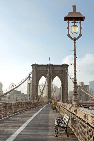 ABSPT0222 - Blaustein, Alan - Brooklyn Bridge