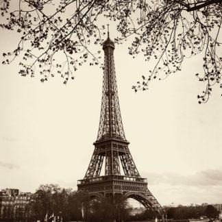 B1440 - Blaustein, Alan - Tour Eiffel