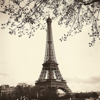 B1440D - Blaustein, Alan - Tour Eiffel