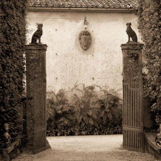 B2594 - Blaustein, Alan - Giardini Ornamentale