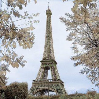 B2921D - Blaustein, Alan - Tour Eiffel au Printemps