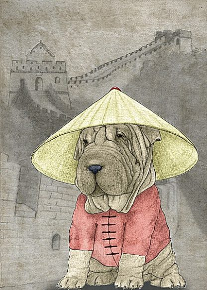 B2964D - Barruf - Shar Pei with the Great Wall