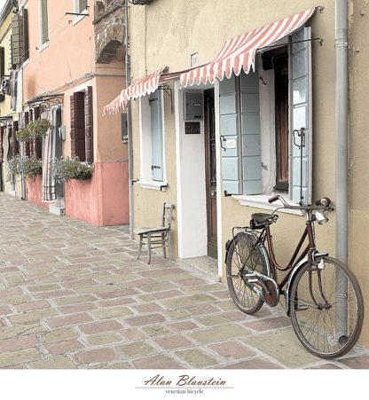 B3071 - Blaustein, Alan - Venetian Bicycle