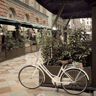 B3084D - Blaustein, Alan - Firenze Bicycle