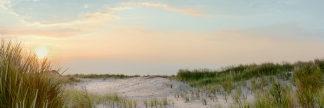 B3236D - Blaustein, Alan - Island Sand Dunes Sunrise No. 1