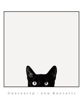B3345 - Bertelli, Jon - Curiosity