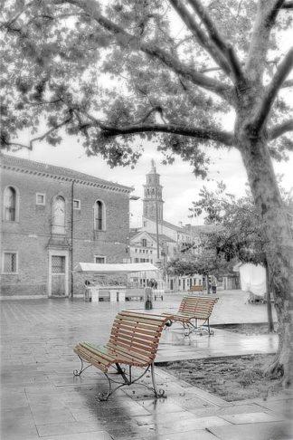 B3438D - Blaustein, Alan - Campo Santa Margherita #1