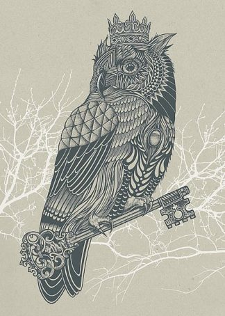 C1153D - Caldwell, Rachel - Owl King