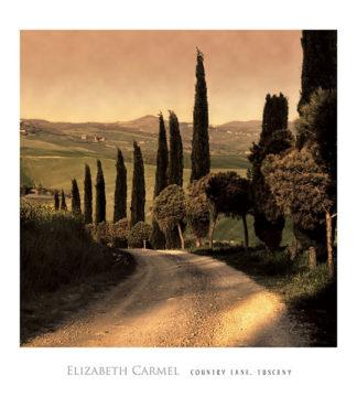 C534 - Carmel, Elizabeth - Country Lane, Tuscany