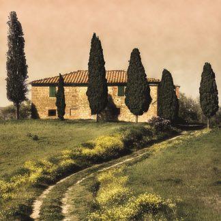C535D - Carmel, Elizabeth - Tuscan Farmhouse
