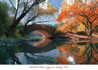 C867 - Chen, Michael - Gapstow Bridge, Fall
