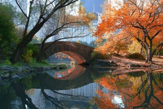 C867D - Chen, Michael - Gapstow Bridge, Fall