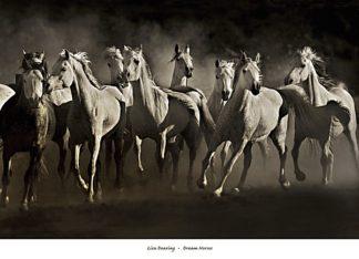 D913 - Dearing, Lisa - Dream Horses