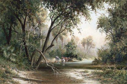 F492D - Fronckowiak, Art - Forked Creek