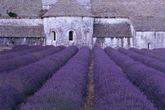 G648D - Gawlowski, Greg - Lavender Abbey