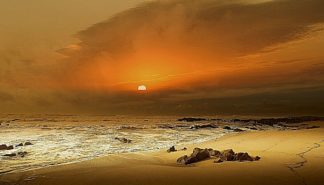G654D - Gonçalves, Adelino - The Beach