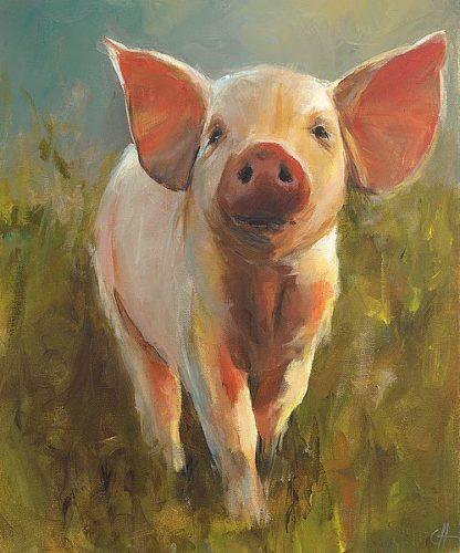 H1225D - Humphry, Cari J. - Morning Pig