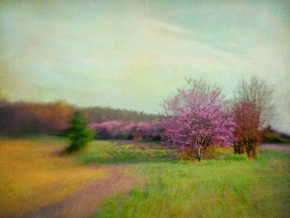 H1232D - Hanna, Dawn D. - Nature Is Divine