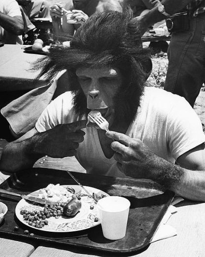 H1368D - Unknown - Even Apes Need a Break