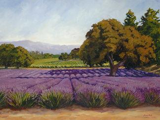 H603D - Hoehn, Susan - Lavender Fields