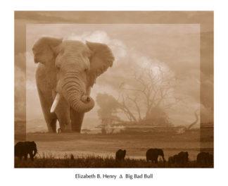 H642 - Henry, Elizabeth B - Big Bad Bull