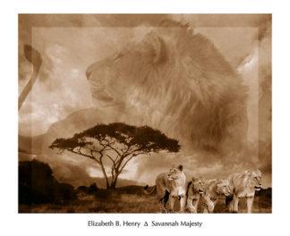 H643 - Henry, Elizabeth B - Savannah Majesty