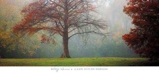 H931 - Horner, Katya - A Late Autumn Morning
