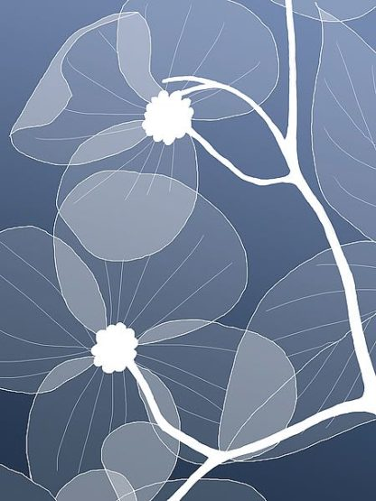 IN246_2 - GraphINC Studio - Floral 2
