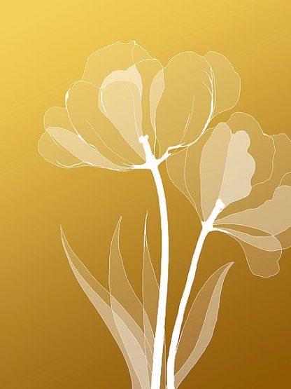 IN246_6 - GraphINC Studio - Floral 6