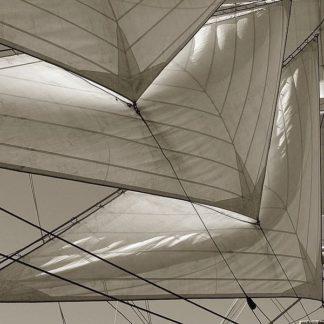 IN30925 - PhotoINC Studio - Sails