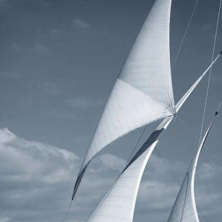 IN30926 - PhotoINC Studio - Sails