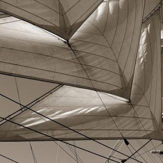 IN31339 - PhotoINC Studio - Sails