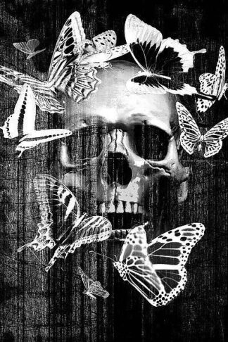 IN31509 - GraphINC - Skull Butterfly Crown