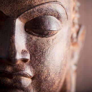 IN38001-1 - PhotoINC Studio - Buddha