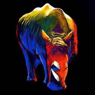 INSUM110 - Summer, Clara - The Rhino