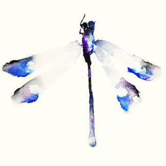 J364D - Johannesson, Karin - Blue & Violet Dragonfly