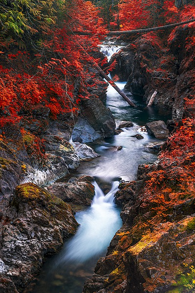 K2495D - Kostka, Vladimir - Water in the Fall