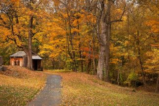 M1078D - Mikaels, Natalie - Autumn Home