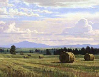 M1290D - Moore, Jay - Fresh Cut Hay