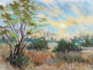 M1494D - Mertz, Nancie King - Texas Sunrise