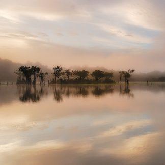 M997D - Mumford, Andy - Dawn Mist on the Amazon