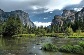 O225D - Oldford, Tim - Yosemite