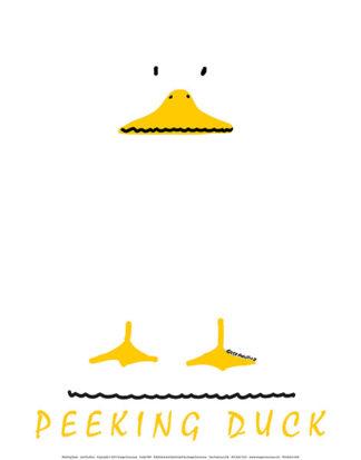 P49 - Posillico, Leo - Peeking Duck