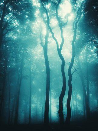 P893D - PhotoINC Studio - Blue Light Woods