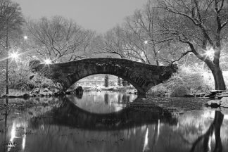 P895D - PhotoINC Studio - Bridge in Winter