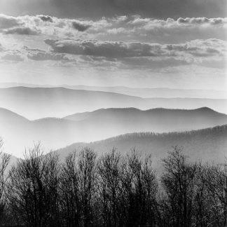 P929D - PhotoINC Studio - Misty Mountains