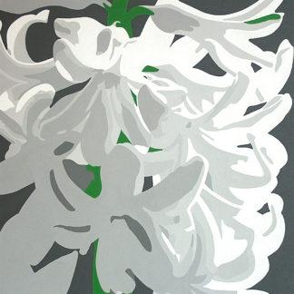 P973D - Porter, Susan - White Hyacinth