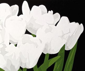 P975D - Porter, Susan - White Tulips